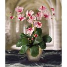 Triple Mini Phalaenopsis Silk Flower Arrangement - Pink White