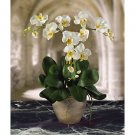 Triple Mini Phalaenopsis Silk Flower Arrangement - White Yellow
