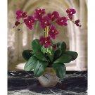 Triple Mini Phalaenopsis Silk Flower Arrangement - Wine