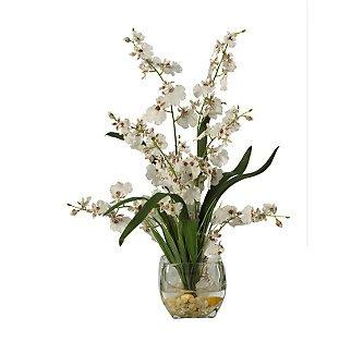Dancing Lady Orchid Liquid Illusion - White