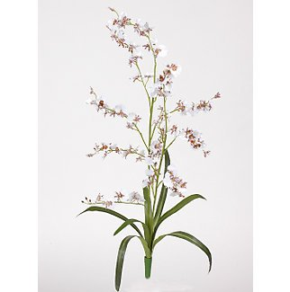 Dancing Lady Silk Orchid Flowers-White
