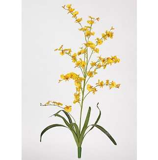 Dancing Lady Silk Orchid Flowers-Yellow