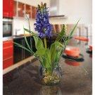 Hyacinth Liquid Illusion Silk Arrangement - Blue