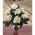 Hydrangea Liquid Illusion Silk Flowers - White
