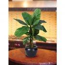 "22"" Banana Silk Palm Tree w/Black Vase"