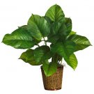 "29"" Large Leaf Philodendron Silk Plant(Real Touch)"