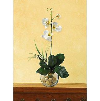 Mini Phalaenopsis L.I. Silk Orchid Flowers - White Yellow