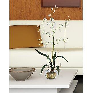 Oncidium Liquid Illusion Silk Orchid Flowers - White
