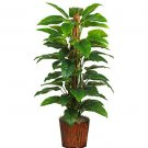 "59"" Philodendron Silk Plant(Real Touch)"