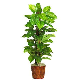 """63"""" Large Leaf Philodendron Silk Plant(Real Touch)"""