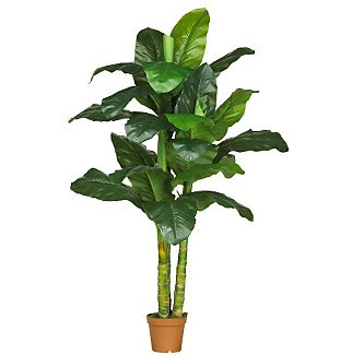 7 Ft Dieffenbachia Silk Plant(Real Touch)