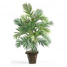 Areca Palm w/Wicker Basket Silk Plant