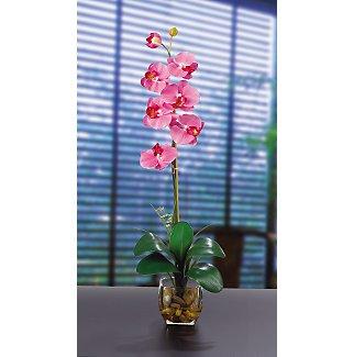 Single Phalaenopsis Liquid Illusion Silk Flower - Dark Pink