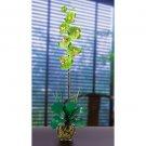 Single Phalaenopsis Liquid Illusion Silk Flower - Green