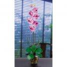 Single Phalaenopsis Liquid Illusion Silk Flower - Mauve