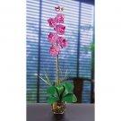 Single Phalaenopsis Liquid Illusion Silk Flower - Orchid
