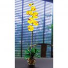 Single Phalaenopsis Liquid Illusion Silk Flower - Yellow