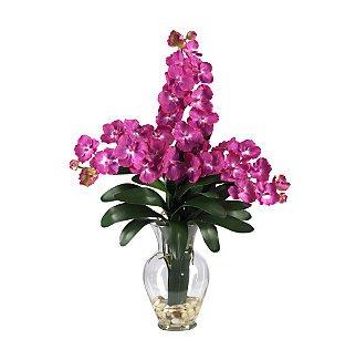 Triple Vanda Orchid Liquid Illusion - Beauty