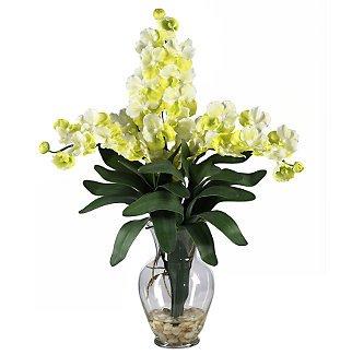 Triple Vanda Orchid Liquid Illusion - White