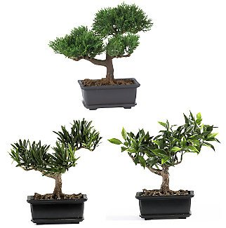 "Set of 3 8.5"" Bonsai Silk Plant Collection"