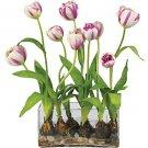 Tulips w/Rectangle Vase Silk Flowers - Raspberry