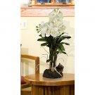 Large Vanda w/Root Base Silk Orchid Flowers - Cream