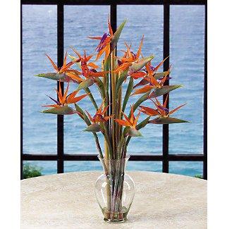 Bird Of Paradise Liquid Illusion w/Bamboo Silk Flower