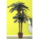 6Ft & 4Ft Double Potted Sago Palm Silk Tree