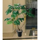 4.5Ft Philodendron Silk Tree