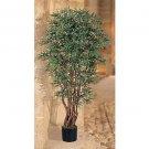 5Ft Ruscus Silk Tree