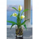 Calla Lilly w/Vase Silk Arrangement - Cream