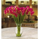 Freesia Liquid Illusion Silk Arrangement - Beauty