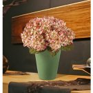Garden Hydrangea Silk Arrangement - Cream Pink