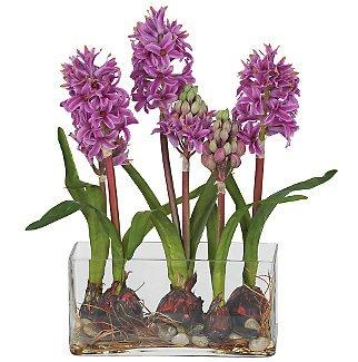 Hyacinth w/Rectangle Vase Silk Flowers - Purple