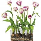 Tulips w/Rectangle Vase Silk Flowers - Raspberry