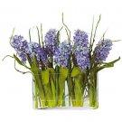 Hyacinth w/Rectangle Glass Planter