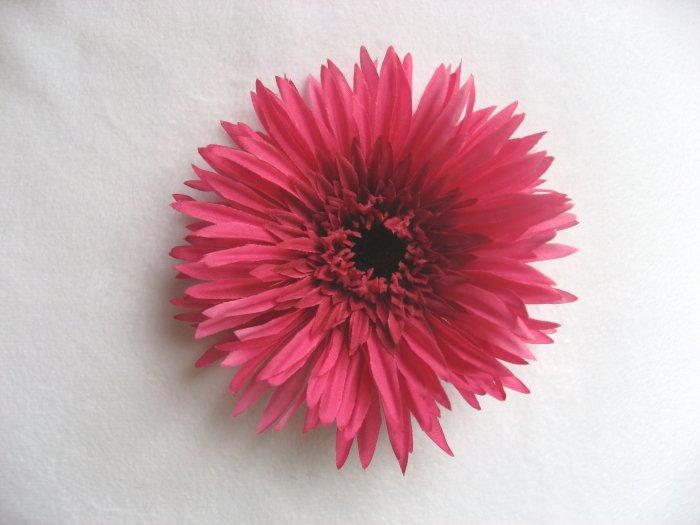Hot Pink Gerbera Daisey