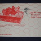 """1974 uncut pattern """"Ozark Calico Mini Hens and Chick""""  from Branson, Mo FREE US SHIPPING"""