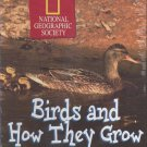 Discis Birds and How They Grow (Ages 4-9) CD-ROM for Win/Mac - NEW in SLV