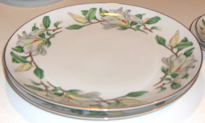 Treasure (WHITE MAGNOLIAS) by Contour China Dinner Plates - Set of 2