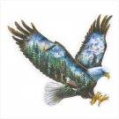 Soaring Eagle Scenic Plaque