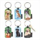 Keith Kimberlin Puppy Keychains
