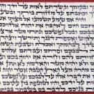 "5*kosher 2.75""  klaf/scroll/parchment for mezuzah mezuza"
