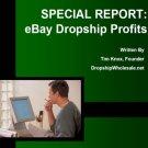 Ebay Dropship Profits