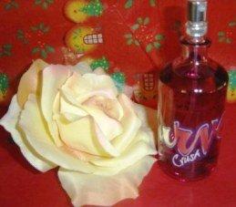 LIZ CLAIBORNE WOMEN'S CURVE CRUSH 3.4 OZ SPRAY PERFUME