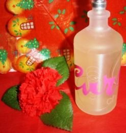 CURVE CHILL WOMEN'S 3.4 OZ SPRAY PERFUME