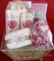 SPRING BLOSSOM 6 PC BATH SET WITH WIRE BASKET