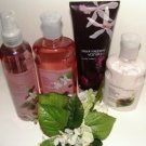 BATH & BODY WORKS BLACK RASPBERRY VANILLA 4 PC BATH GIFT SET