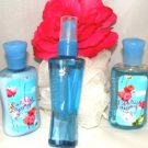 BATH & BODY WORKS CARRIED AWAY 3 PC MINI TRAVEL BATH SET