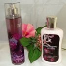 BATH & BODY WORKS 2 PC BLACK RASPBERRY VANILLA TRAVEL SET